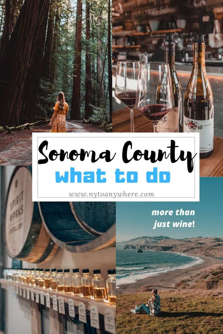 What to do in Sonoma County
