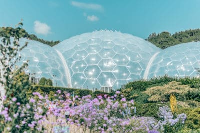 The Eden Project rainforest biome