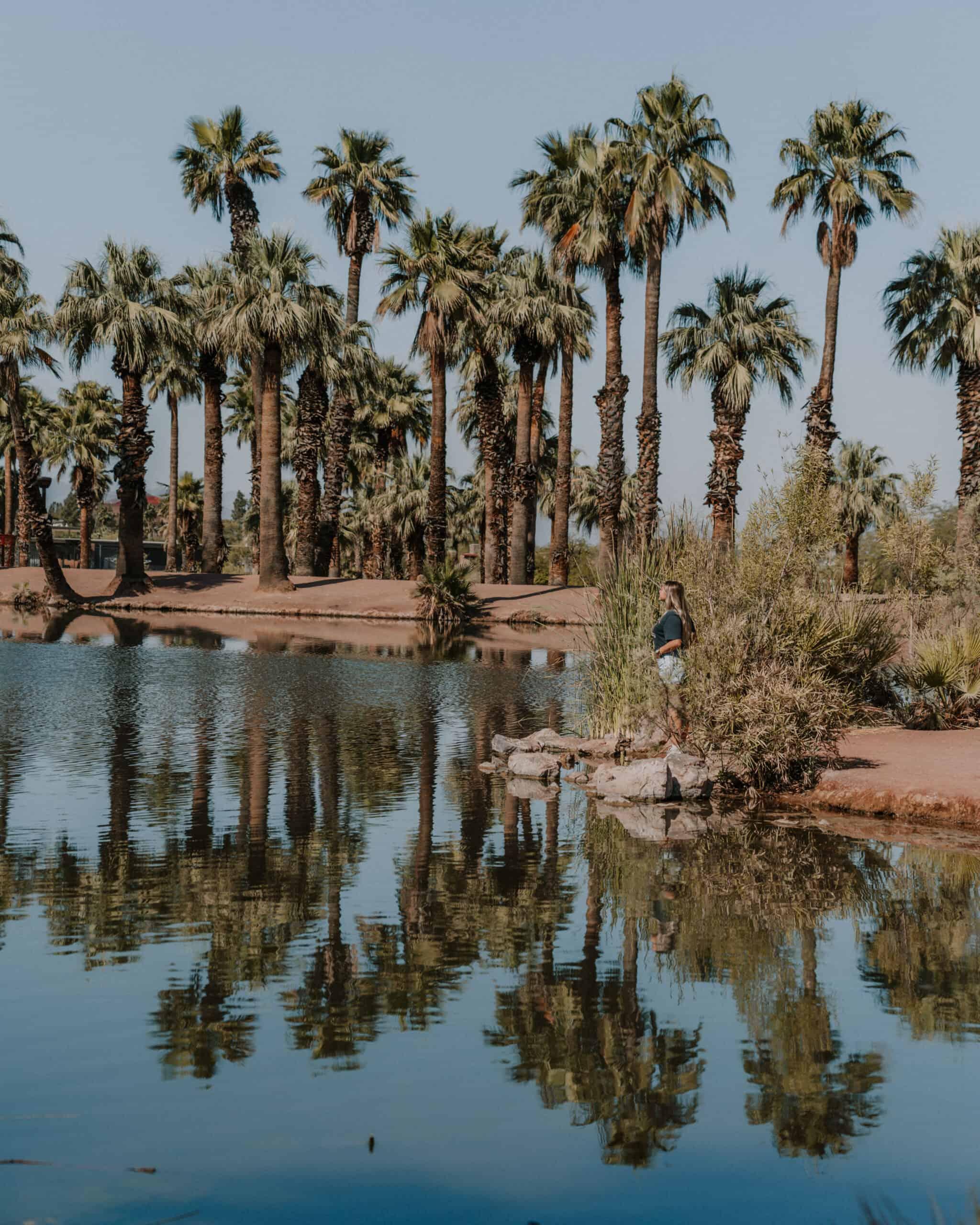 Papago Park - pond