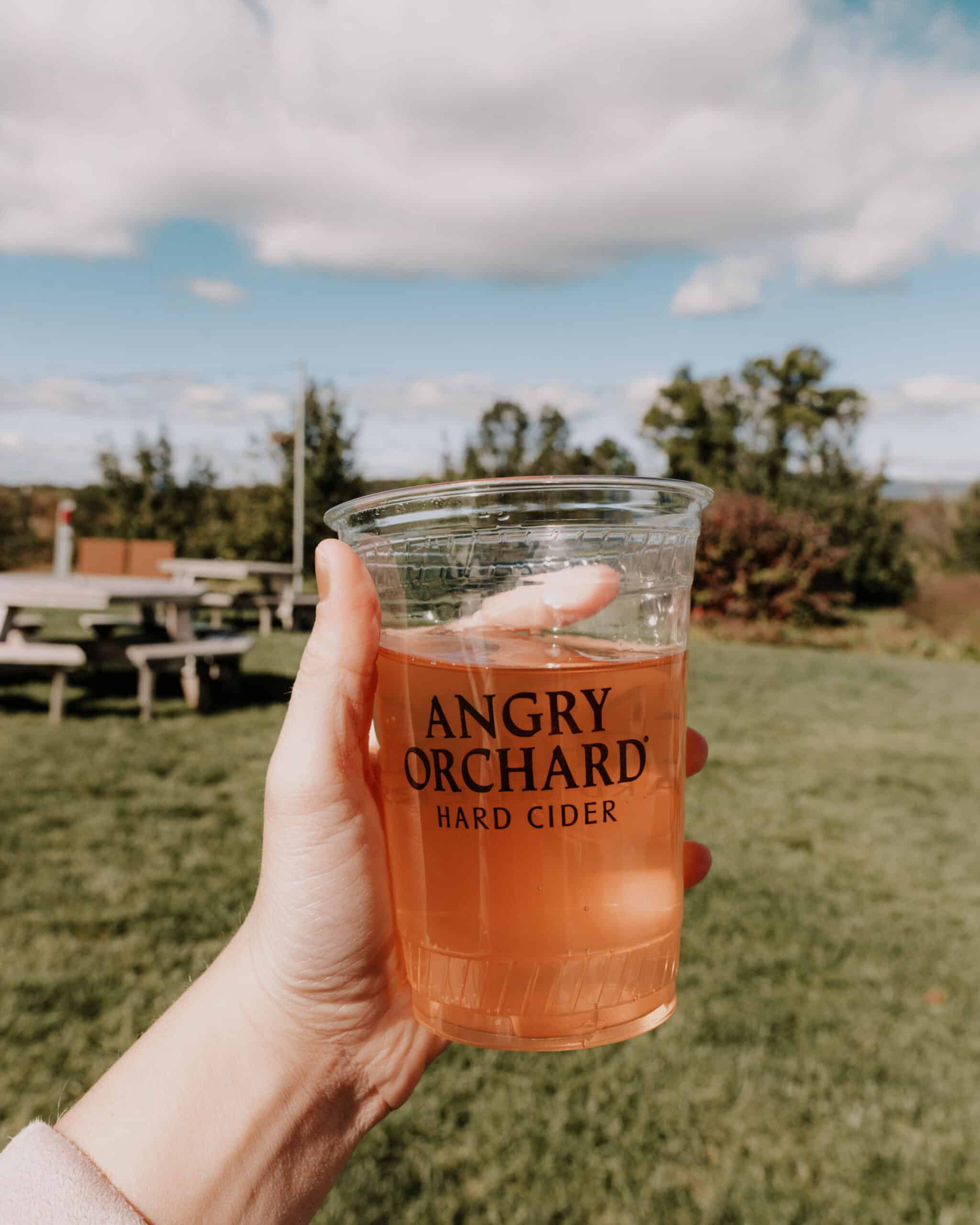 Angry Orchard Cidery