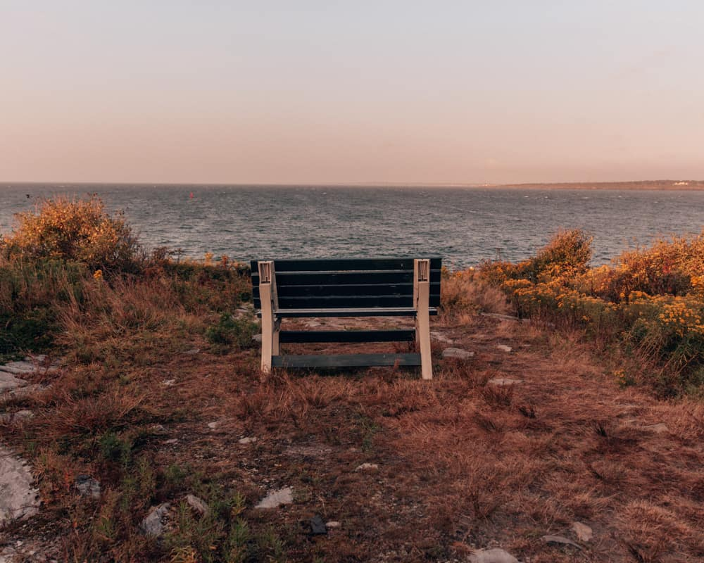 bench with a sea view