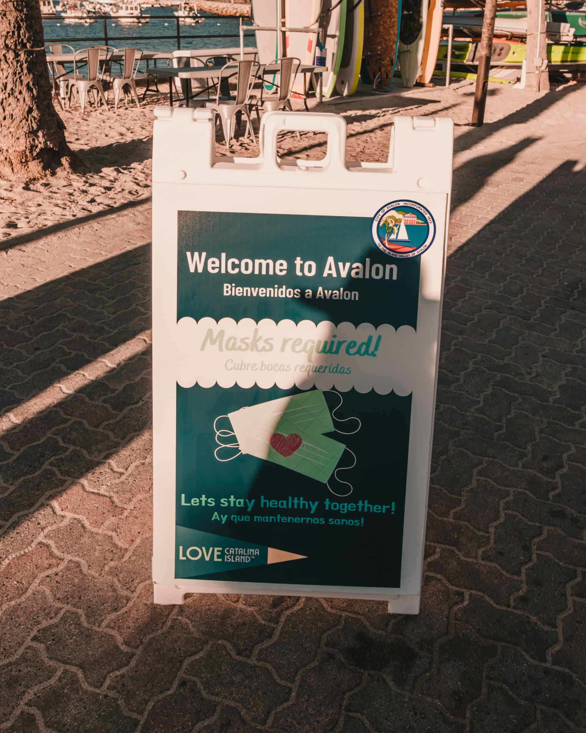 Avalon Safety Precautions