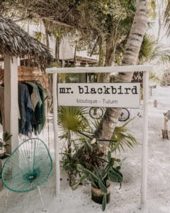 Mr. Blackbird Tulum