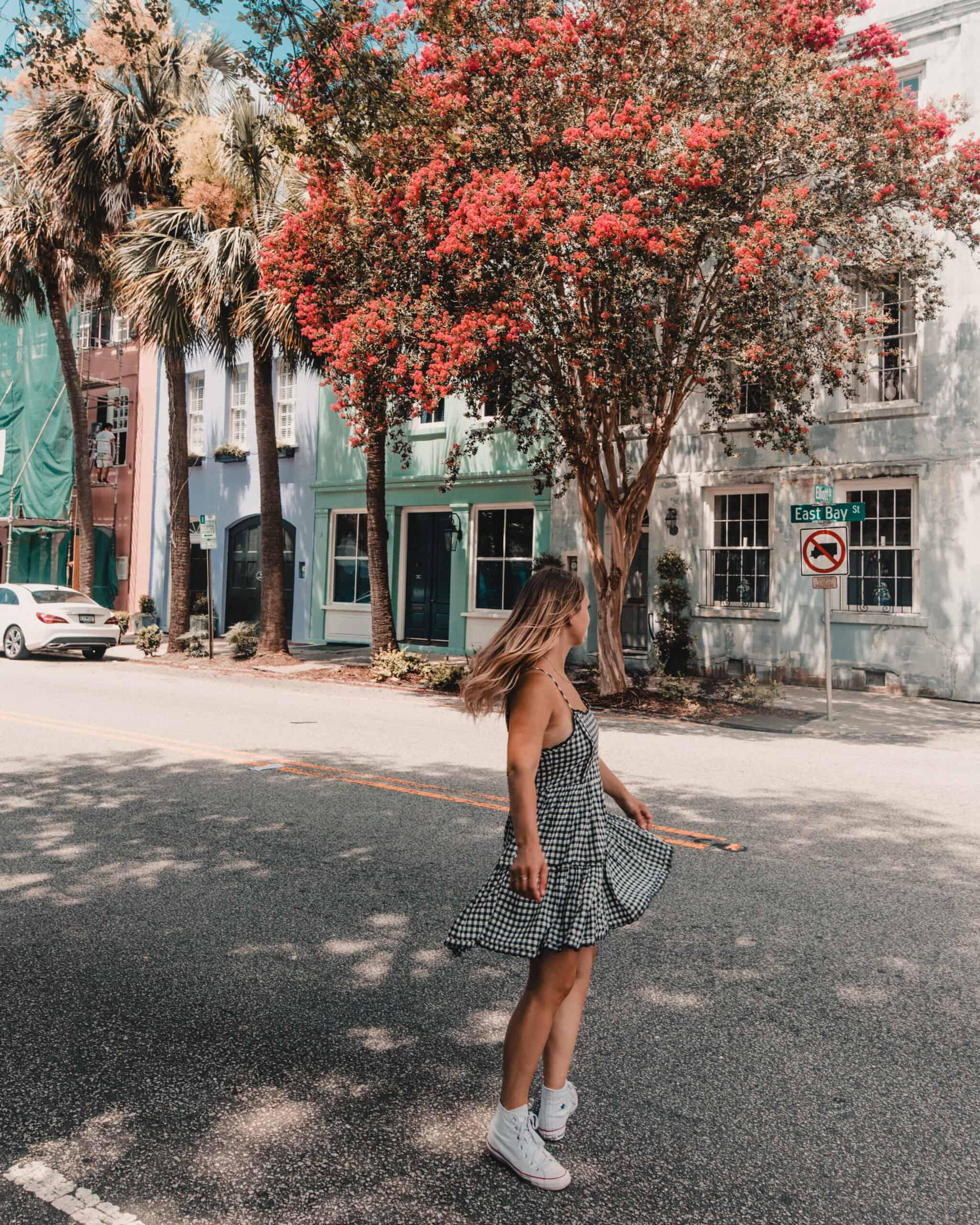 flowery tree Rainbow Row Charleston South Carolina