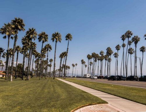 Guide to Downtown Santa Barbara, California: Things to Do, Eat + Where to Stay