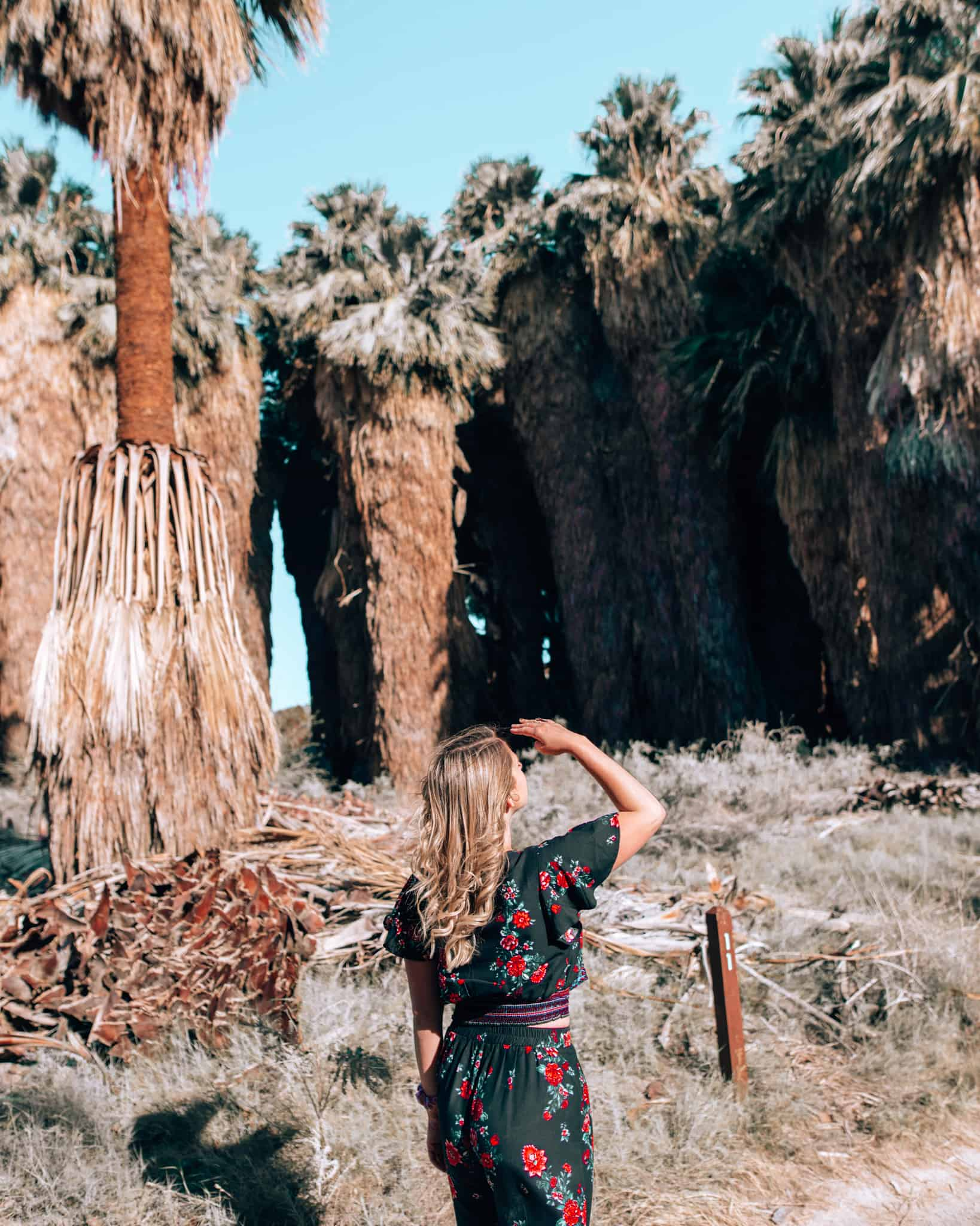 girl standing with hand at head looking at palm trees