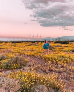 girl standing with windmills in the distance