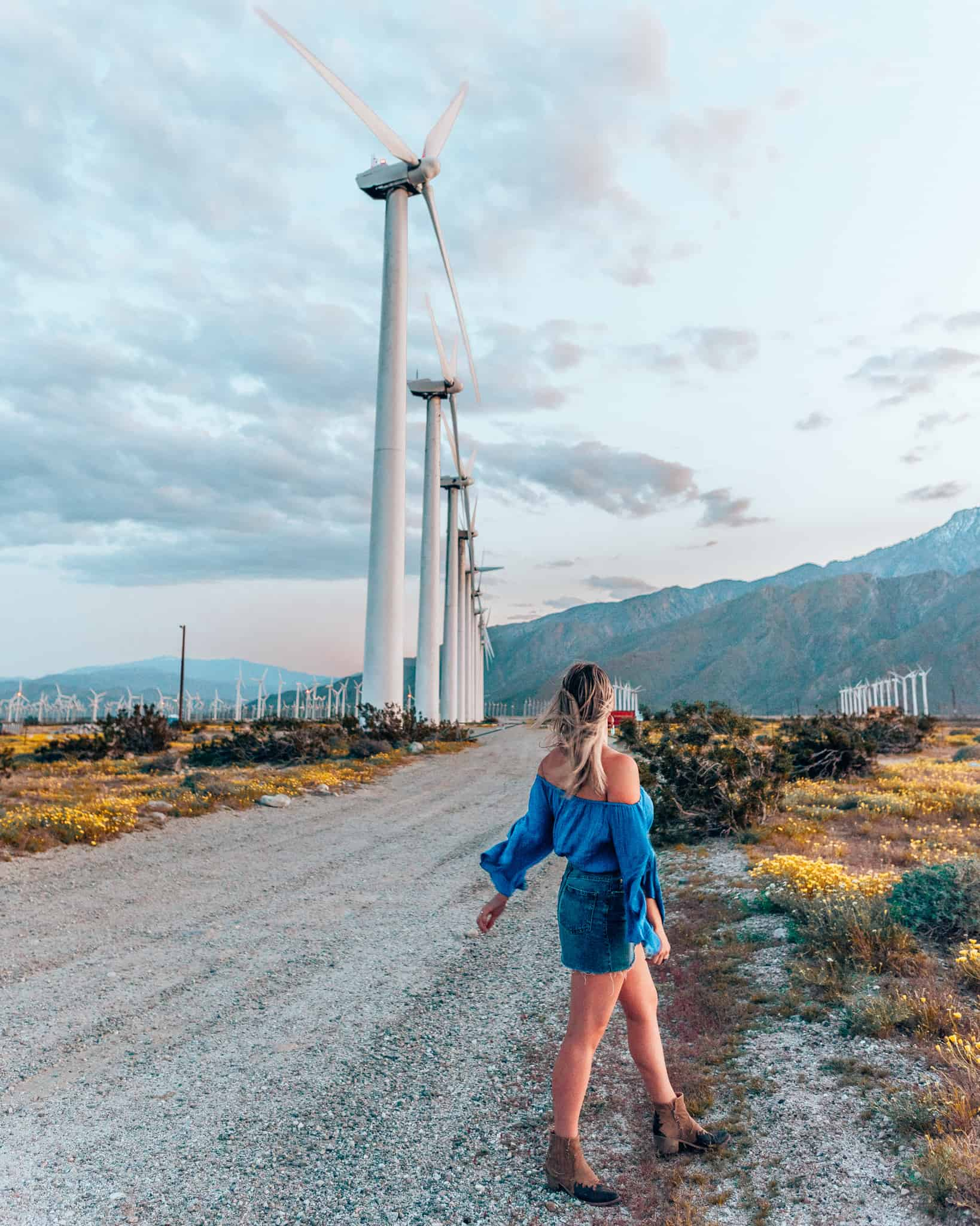 girl standing in front of windmills